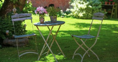 How to make the most of shady garden areas
