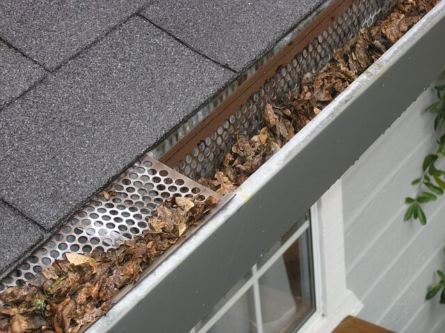 Best Gutter Leaf Guards